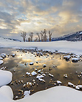 Yellowstone National Park, Wyoming: Sunrise clouds reflected in the Lamar River in the Lamar Valley with distant cottonwood trees