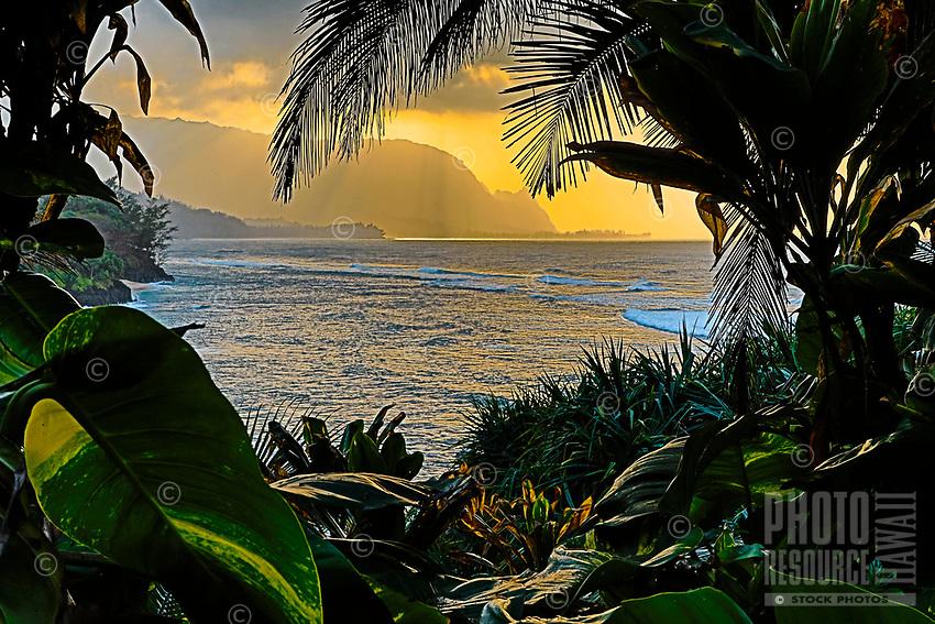 Sunset over the ocean with distant Bali Hai (or Mount Makana), seen through jungle foliage at Princeville, Kaua'i.