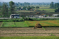 NEPAL, Terai, Tandi, the Terai is the grain basket of the country, rice farming, harvest / NEPAL, Terai, Tandi, das Terai ist die Kornkammer Nepals, Reisernte