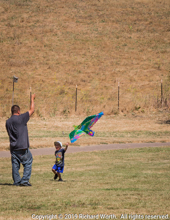 A father works to launch a kite delighting his son on a warm summer afternoon at Garin Regional Park's Kite Field in Hayward, California.