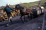 Open cast mining Wales UK. Private coal mine pit pony. Nan y Cafin. South Wales. 1990s