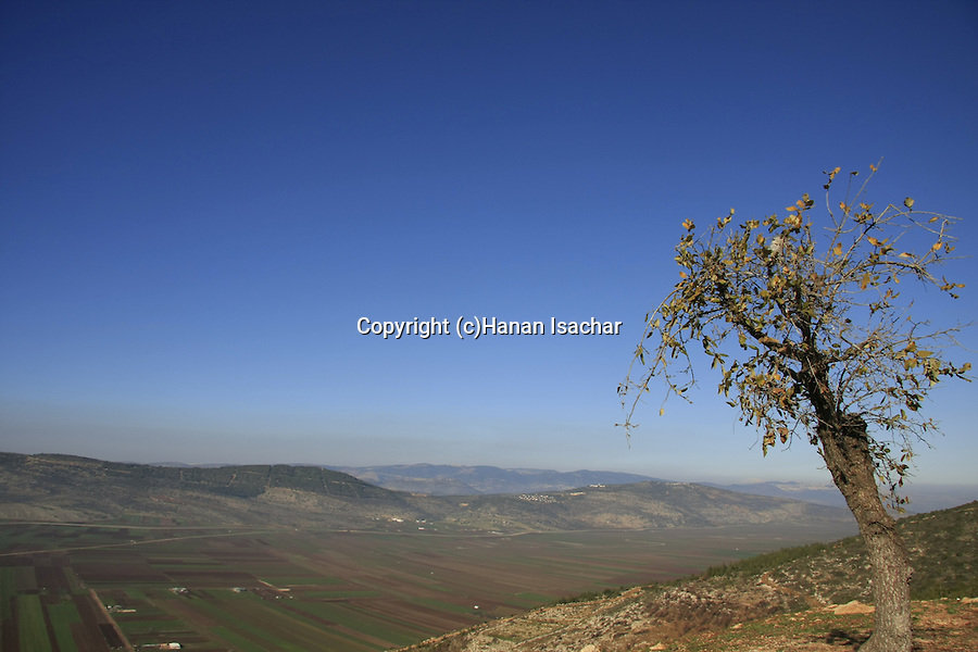 Israel, Lower Galilee. A view of Beit Netofa valley from Turan scenic road