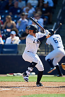 New York Yankees second baseman Wilkerman Garcia (64) at bat during a Grapefruit League Spring Training game against the Toronto Blue Jays on February 25, 2019 at George M. Steinbrenner Field in Tampa, Florida.  Yankees defeated the Blue Jays 3-0.  (Mike Janes/Four Seam Images)
