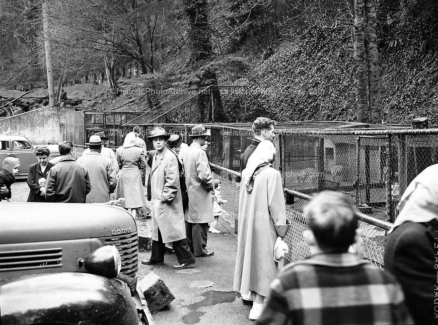 9969-7639. Zoo goers grouping around to look at the animals. Portland zoo animals in mud. March 23 or 26, 1949.