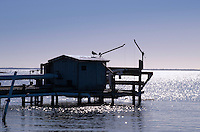 Coastal shanty, Tuckerton, New Jersey, USA