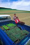 Tom and Chris Beddard, Lady Moon Organic Farm