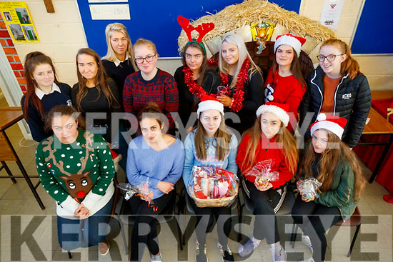 Students from Presentation Secondary School, Tralee who held a LCVP Christmas Market fundraiser, on Friday morning last, were front l-r: Rhiannon Sweeney, Victoria Wielogorska, Valerie O'Sullivan, Lauren Scannell and Katie Duffy. Back l-r: Paige Hallissey, Clodagh Fitzgerald, Anna O'Dowd, Elena Barry, Aisling Walsh, Claudia O'Rahilly, Tea Kolarević and Niamh Hurley.