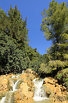 Israel, Nahal Tzalmon in the Upper Galilee