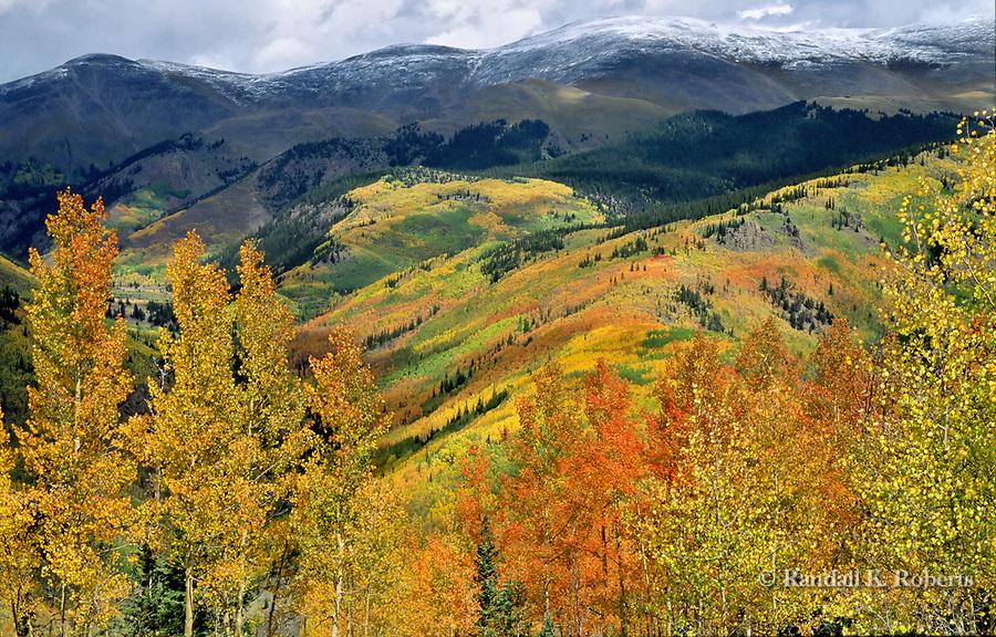 Mammoth Mountain and aspens, San Juan Mountains, SW Colorado