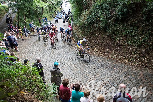Piet Allegaert (BEL/Sport Vlaanderen-Baloise) charging on over the cobbles<br /> <br /> Dwars door het Hageland (1.1)<br /> 1 Day Race: Aarschot > Diest (194km)