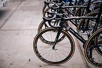 Team Sport Vlaanderen - Baloise bikes<br /> <br /> 74th Omloop Het Nieuwsblad 2019 <br /> Gent to Ninove (BEL): 200km<br /> <br /> ©kramon