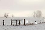 Europa, DEU, Deutschland, Nordrhein Westfalen, NRW, Rheinland, Niederrhein, Xanten, Naturschutzgebiet Xantener Altrhein, Bislicher Insel, Winter, Schnee, Baeume, Zaun, Weidenzaun, Kopfweide, Dunst, Kategorien und Themen, Natur, Umwelt, Landschaft, Jahreszeiten, Stimmungen, Landschaftsfotografie, Landschaften, Landschaftsphoto, Landschaftsphotographie, Naturschutz, Naturschutzgebiete, Landschaftsschutz, Biotop, Biotope, Landschaftsschutzgebiete, Landschaftsschutzgebiet, Oekologie, Oekologisch, Typisch, Landschaftstypisch, Landschaftspflege....[Fuer die Nutzung gelten die jeweils gueltigen Allgemeinen Liefer-und Geschaeftsbedingungen. Nutzung nur gegen Verwendungsmeldung und Nachweis. Download der AGB unter http://www.image-box.com oder werden auf Anfrage zugesendet. Freigabe ist vorher erforderlich. Jede Nutzung des Fotos ist honorarpflichtig gemaess derzeit gueltiger MFM Liste - Kontakt, Uwe Schmid-Fotografie, Duisburg, Tel. (+49).2065.677997, ..archiv@image-box.com, www.image-box.com]