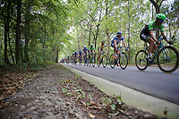 peloton through the woods<br /> <br /> GP Impanis 2014