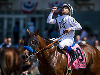 ELMONT, NY - JUNE 10: American Anthem #8 ridden by Mike Smith leads the field across the wire in the Woody Stevens Stakes at Belmont Park on June 10, 2017 in Elmont, New York. (Photo by Alex Evers/Eclipse Sportswire/Getty Images)