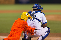 AFL West catcher Keibert Ruiz (17), of the Glendale Desert Dogs and Los Angeles Dodgers organization, is slapped on the backside by one of the San Diego Chicken's chiclets between innings of the Arizona Fall League Fall Stars game at Surprise Stadium on November 3, 2018 in Surprise, Arizona. The AFL West defeated the AFL East 7-6 . (Zachary Lucy/Four Seam Images)