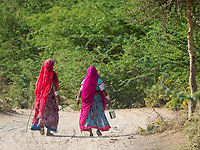 OLYMPUS DIGITAL CAMERA women walking, Narlai