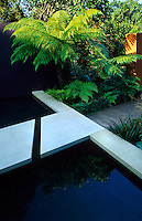 Reflective pond with sandstone edging and stepping stones. Rust steel wall with tree ferns, underplanted with ferns edged in Box