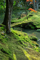 26. Saihoji 西芳寺 The Moss Garden at Saihoji Temple is often called Koke-dera or Moss Temple.  More than 120 different types of moss now grow at Saihoji, some developed naturally or even accidentally thanks to its nearness to the pond. Saihoji is one of the few temples in Kyoto where visitors must request an invitation in advance before their visit. Visitors are required to participate in tracing sutras before visiting the famous gardens. In this way the monks are able to maintain the integrity of the temple and garden and prevent mass tourism from destroying the tranquility of this unique retreat.