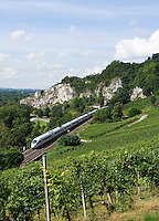 Germany, Baden-Wuerttemberg, Markgraefler Land, wine village Istein, ICE train passing vineyards