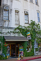 Eureka Springs, Arkansas has block after block of one-of-a-kind shops, boutiques, fine art galleries, craft emporiums, spas, museums and restaurants. <br /> Eureaka Springs is one of the top 25 art destinations in America.