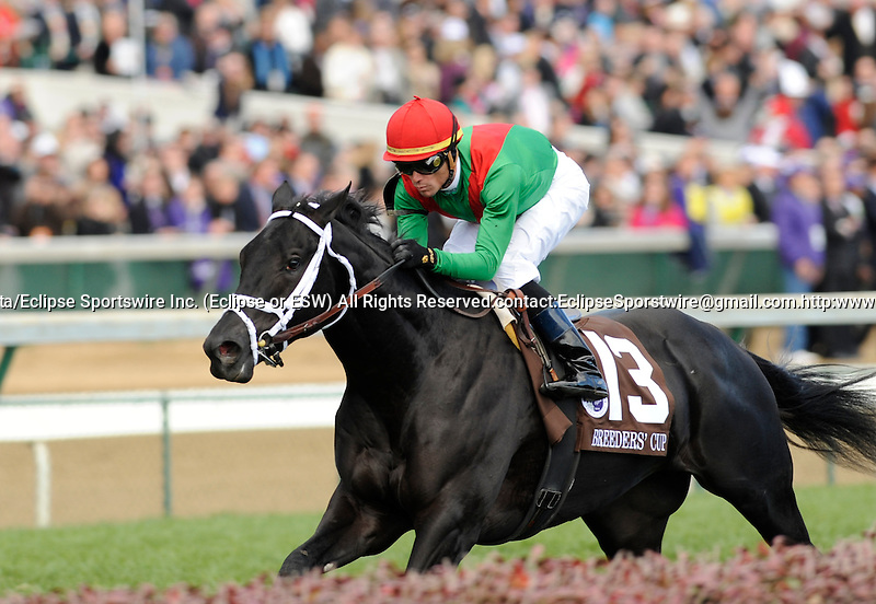 06 November 2010: Pluck and jockey Garrett Gomez win the Breeders Cup Juvenile Turf at Churchill Downs in Louisville, KY. Copyright Charles Pravata/Eclipse Sportswire.