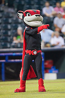 "Richmond Flying Squirrels mascot ""Nutzy"" prior to the game against the New Hampshire Fisher Cats at The Diamond on June 13, 2014 in Richmond, Virginia.  The Fisher Cats defeated the Flying Squirrels 6-3.  (Brian Westerholt/Four Seam Images)"