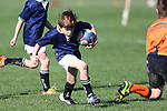 NELSON, NEW ZEALAND - AUGUST 3 U7s Seven Tournament on August 3 at Upper Moutere 2019 in Nelson, New Zealand. (Photo by: Evan Barnes Shuttersport Limited)