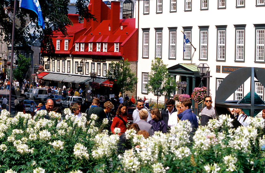 Rue du Tresor, shops artist and restaurants. Quebec City