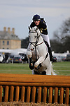 31st March 2017, Guy Woods riding ALGORITHM during the 2017  Belton International Horse Trials, Belton House, Grantham, United Kingdom. Jonathan Clarke/JPC Images