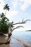 FRENCH POLYNESIA, Moorea Island. View of Coastline.