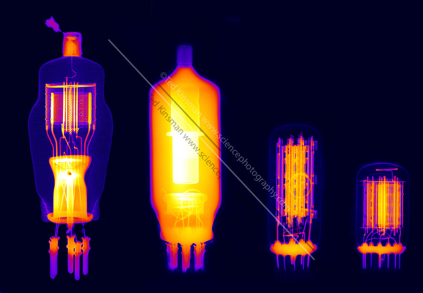 An X-ray of a selection of vacuum tubes.  These tubes were once commonly used in electronic devices to amplify a signal.