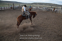 Stiff Cowboys working and playing. Cowboy Cowboy Photo Cowboy, Cowboy and Cowgirl photographs of western ranches working with horses and cattle by western cowboy photographer Jess Lee. Photographing ranches big and small in Wyoming,Montana,Idaho,Oregon,Colorado,Nevada,Arizona,Utah,New Mexico.