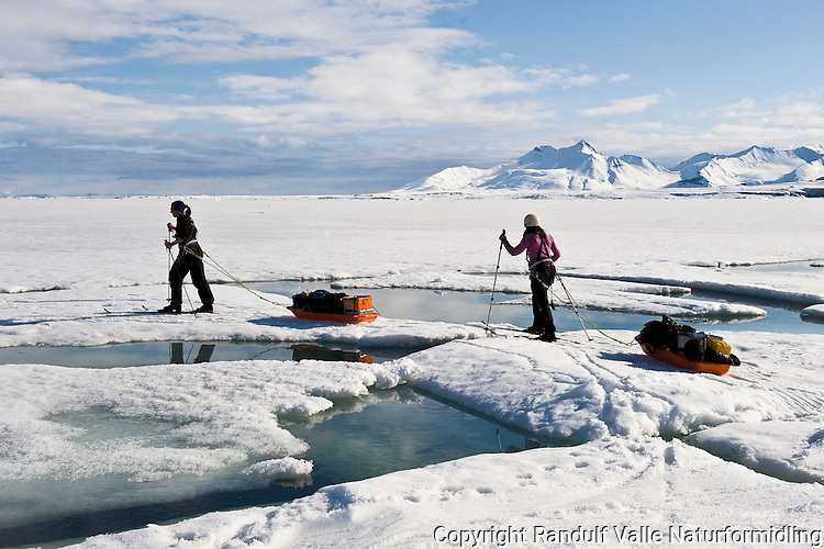 Skiløpere med pulker på sjøisen ved Sveabreen på Svalbard. ---- Skiers on the sea ice, near Sveabreen, Svalbard.