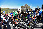 The main bunch of favourites including Fabio Aru (ITA) Astana and Nairo Quintana (COL) Movistar Team climb the Sormano during the 111th edition of Il Lombardia 2017 &quot; The Race of the Falling Leaves&quot; the final monument of the season, running 247km from Bergamo to Como, Italy. 7th October 2017.<br /> Picture: LaPresse/Fabio Ferrari | Cyclefile<br /> <br /> <br /> All photos usage must carry mandatory copyright credit (&copy; Cyclefile | LaPresse/Fabio Ferrari)
