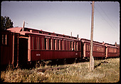 Coaches #0256, #0252, other , Ridgway<br /> RGS  Ridgway, CO