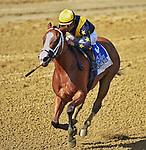 08-03-19 Longines Test Stakes Saratoga
