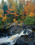 Pattison State Park, WI<br /> Small Falls on the Black River with hardwood forest in fall color