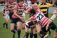 Taunton RFC v Shelford 2012