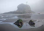 Olympic National Park, WA<br /> Pools reflections at low tide with seastacks in the morning fog on Second Beach