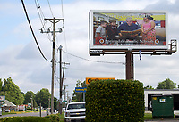 NWA Democrat-Gazette/JASON IVESTER<br /> Billboard with Springdale Mayor Doug Sprouse promoting Springdale Public Schools on display on S. Pleasant Street in Springdale; photographed on Tuesday, June 13, 2017, for web story
