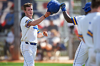 South Dakota State Jackrabbits right fielder Logan Holtz (6) celebrates with teammates after hitting a home run during a game against the FIU Panthers on February 23, 2019 at North Charlotte Regional Park in Port Charlotte, Florida.  South Dakota State defeated FIU 4-3.  (Mike Janes/Four Seam Images)