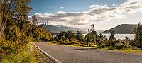 Road along Lake Ianthe at sunset, West Coast, South Westland, South Island, New Zealand