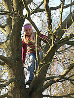 Mädchen, Kind klettert auf Baum, klettern