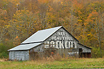 Barn with fall color, See Beautiful Rock City painted on front, central Tenn.