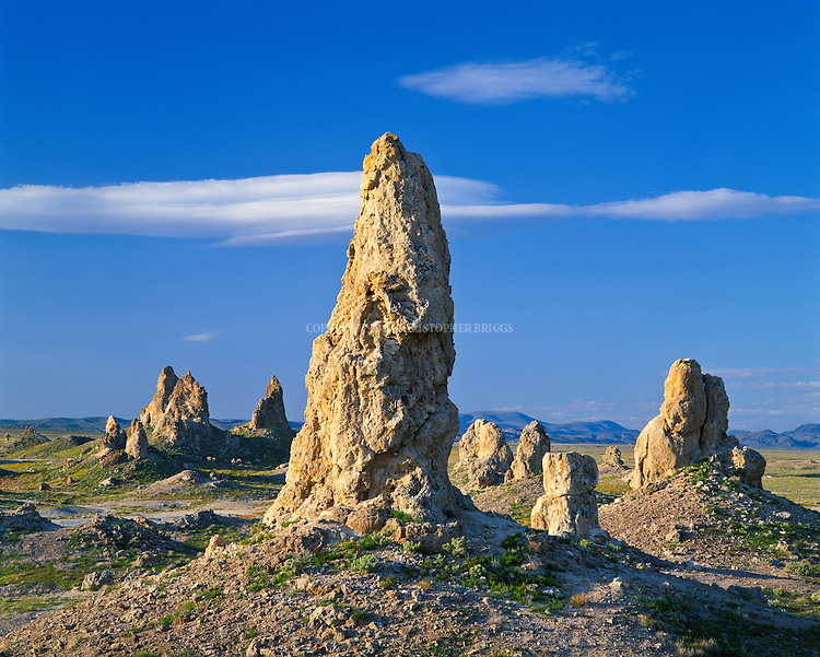 More than 500 tufa spires (porous rock formed as a deposit from springs of streams), some as high as 140 feet (43 m), rise from the bed of the Searles Lake (dry) basin. Composed primarily of calcium carbonate (tufa), known as tufa pinnacles, formed underwater 10,000 to 100,000 years ago, now exist 2,000 feet above sea level in the Western Mojave Desert. Pinnacles are located within 3,800 acres (15 km2) of federal land managed by the Bureau of Land Management; are inside a BLM Area of Critical Environmental Concern (ACEC) designated to protect and preserve unique resources. Trona Pinnalces National Natural Landmark (Est. 1968), California Desert National Conservation Area.
