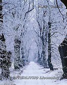 Marek, CHRISTMAS LANDSCAPES, WEIHNACHTEN WINTERLANDSCHAFTEN, NAVIDAD PAISAJES DE INVIERNO, photos+++++,PLMPUA293,#xl#