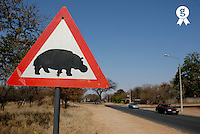 South Africa, Kruger NP,  hippopotamus crossing road sign by road (Licence this image exclusively with Getty: http://www.gettyimages.com/detail/200503186-001 )