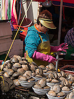 auf dem Jagalchi-Fischmarkt, Busan, Gyeongsangnam-do, Südkorea, Asien<br /> Jagalchi fishmarket, Busan,  province Gyeongsangnam-do, South Korea, Asia
