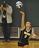 Wantagh No. 9 Haley Labo serves during the Nassau County varsity girls' volleyball Class A final against Long Beach at SUNY Old Westbury on Wednesday, Nov. 11, 2015. Wantagh won 3-0.<br /> <br /> James Escher