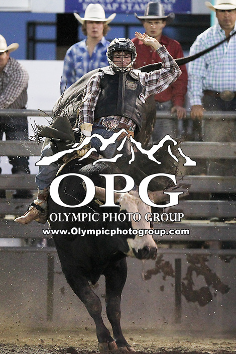 21 Aug 2013:  Cole Echols riding the bull Freddy scored a 66 in the third round of competition of the Extreme Bulls Wednesday at the Kitsap County Fair and Stampede Rodeo in Bremerton, Washington.